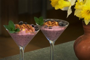 Blueberry Yogurt Smoothie Parfait