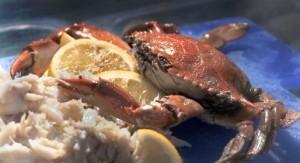 Seaview Crab Company - Flavor, NC
