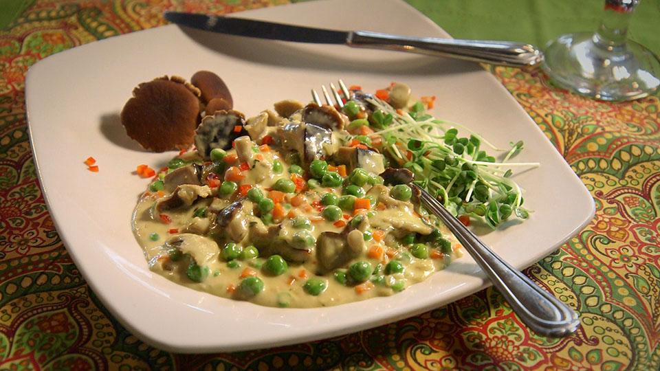 Black Poplar Mushroom Ragout | Flavor, NC