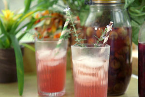 Muscadine Grape Shrub