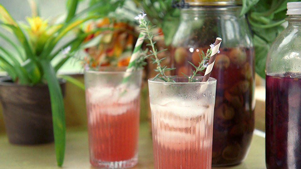 Muscadine Grape Shrub | Flavor, NC