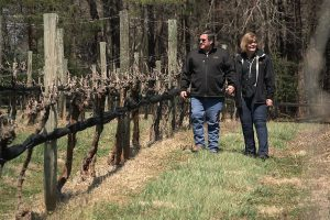 From The Vineyard | Sanders Ridge Winery, RagApple Lassie Vineyards, & Westbend Winery and Brewery