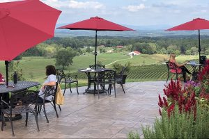 From the Vineyard | Banner Elk Winery & Villa, Piccione Vineyards, & Dennis Vineyards