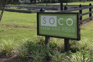 SoCo | Farm to Table | Wilson, NC