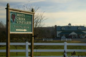 From The Vineyard | Wine Competition / Misty Creek